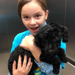 A young girl carrying a black fluffy dog.