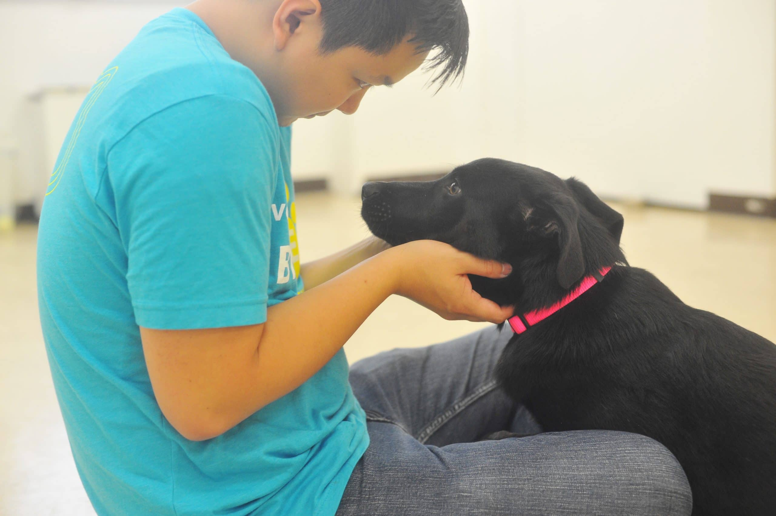 volunteer looking into the eyes of a dog
